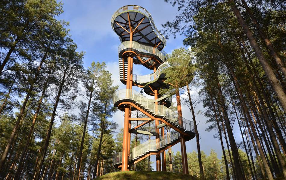 Merkinės apžvalgos bokštas - Dzūkijos uoga