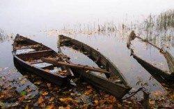 Dzūkijos nacionalin is parkas- ežerai