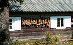 Dzukijos Nacionalinis parkas