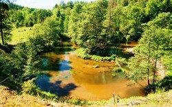 Dzūkijos nacionalinis parkas-plaukimas Grūda