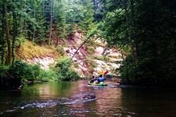 Plaukimas Ūlos upe - baidarės su nakvyne - Dzūkijos uoga-