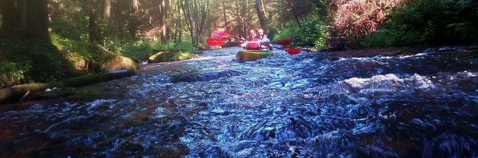 Photo: canoeing tours in Lithuania - Dzukija National Park by Druskininkai - Dzukijos uoga