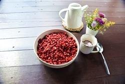 Экотуризм в Литве - ягоды и грибы - Dzūkijos uoga