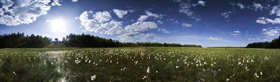 Национальные парки литвы - познавательные маршруты Дзукийского нацпарка