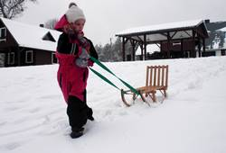 Foto: pramogos Dzūkijos kaimo turizmo sodyboje žiemą - rogutės - Dzūkijos uoga