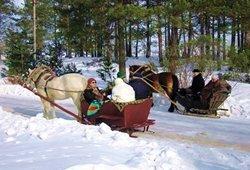 Pasivažinėjimas kinkiniu žiemą kaimo turizmo sodyboje
