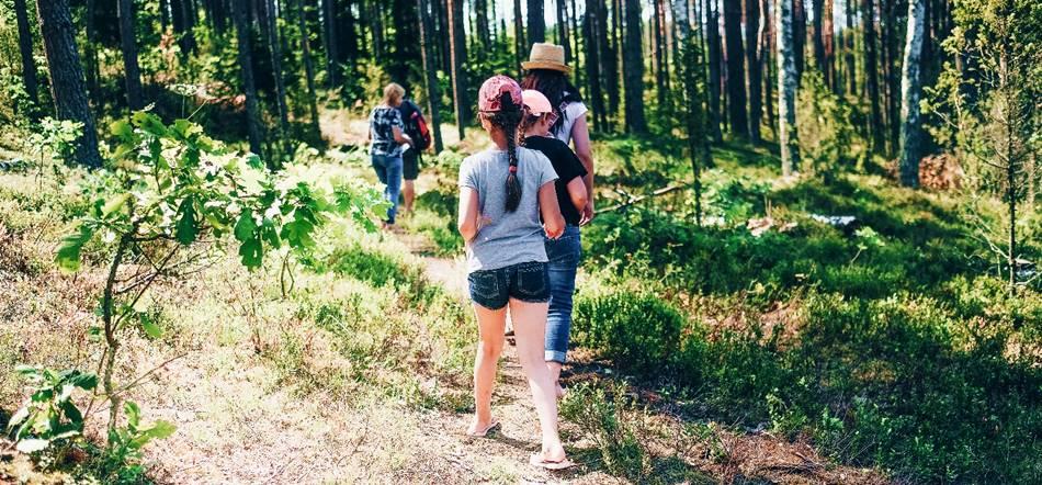 """Sodybos pramogos: pasivaikščiojimas mišku - """"Dzūkijos uoga"""""""