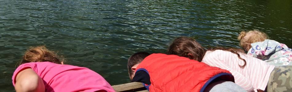 """Namelių nuoma prie ežero Dzūkijoje - """"Dzūkijos uoga"""""""