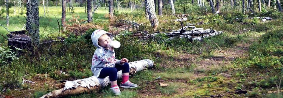 """Отдых с маленьким ребёнком в Литве - в усадьбе """"Dzukijos uoga"""""""
