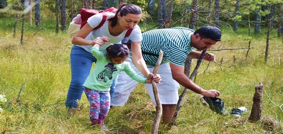 "Family holidays in Druskininkai Lithuania - attractions in villa ""Dzukijos uoga"""