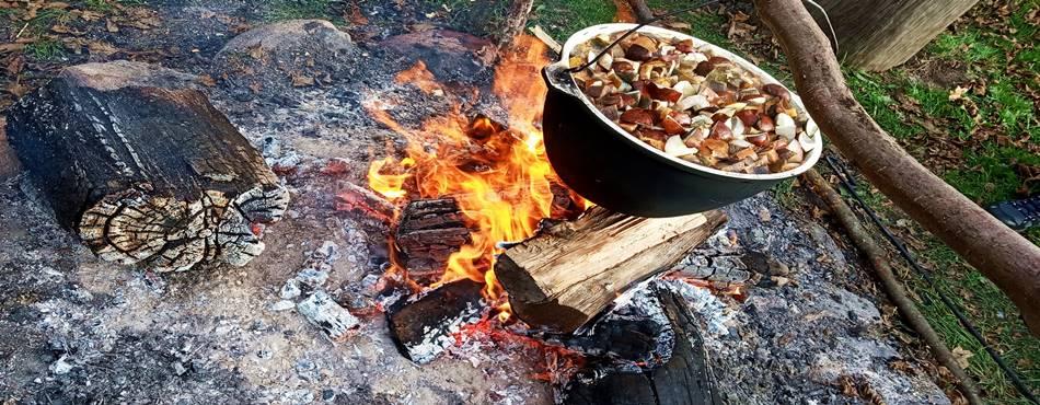 """Собирание грибов возле Друскининкай и грибной суп в усадьбе """"Dzūkijos uoga"""""""