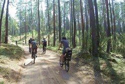 """Sodybos seminarams renginiai - dviračių žygiai Dzūkijoje - sodyboje """"Dzūkijos uoga"""""""