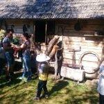 אטרקציות למשפחות עם ילדים ליד דרוסקינינקאי - שיעורי דבורים